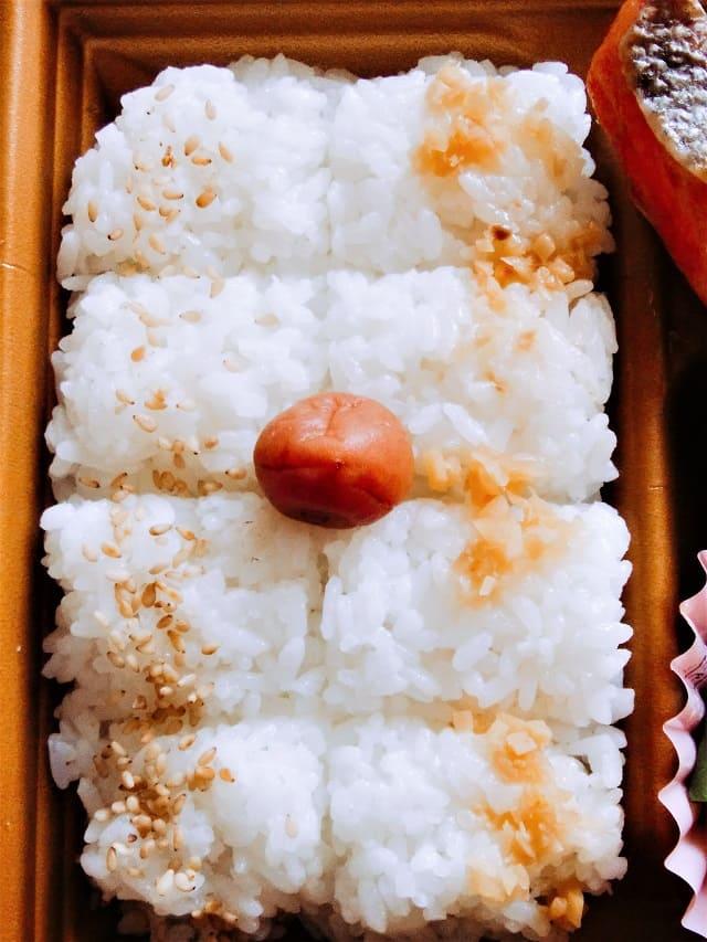 生姜のせ白飯